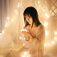 LED新年节日彩灯