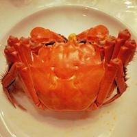 京东签下全国11个大闸蟹产区
