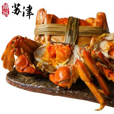 鲜活大闸蟹全母螃蟹14只
