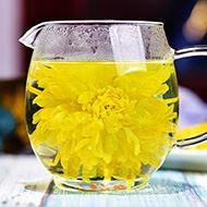 金丝皇菊一朵一杯20朵