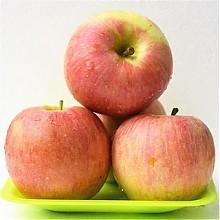 江苏徐州红富士苹果 5斤(果径70-80mm)