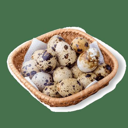 朗宸新鲜生鹌鹑蛋50枚
